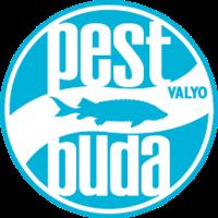 valyo_logo_kicsi